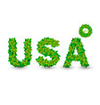 usa word of the leaves on white background eco vector image vector image