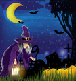 Wicked witch and pile of pumpkins vector image