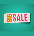 banner for big sale vector image vector image