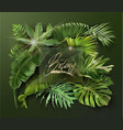 banner with green tropical leaves on green vector image