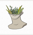 head a greek statue with growing plants vector image