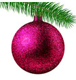 rose christmas ball or bauble and fir branch vector image vector image