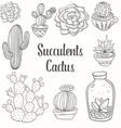 Succulent Cactus Set vector image vector image