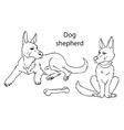 Dog German shepherd on white background vector image