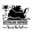 australian shepherd in jump - dog happy face paw