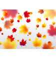 autumn flying red orange vector image