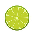 green lime icon citrus refreshing drink vector image vector image