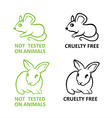 Not tested on animals vector image vector image