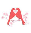 pair of lovebirds valentines day vector image vector image
