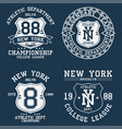 set new york ny vintage graphic for t-shirt vector image vector image