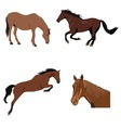 set of brown horses vector image