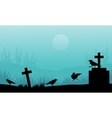 Silhouette of crow and tomb Halloween with fog vector image vector image