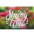 Spring time letteringGreenpink blurred vector image vector image