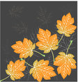 Beautiful leaves seamless vector image vector image