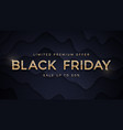 black friday sale elegant luxury golden vector image vector image