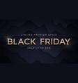 black friday sale elegant luxury golden vector image