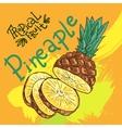 hand drwan fruit vector image