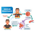 insulin resistance labeled vector image