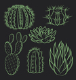 set of isolated cactus vector image vector image