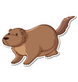 sticker design with cute beaver isolated vector image vector image