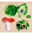Vegetables watercolor rotkappe artichokes black vector image