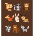 fox rabbit deer squirrel raccoon beaver skunk and vector image vector image