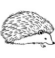hedgehog stylization icon logo line sketch vector image vector image