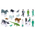 isometric veterinary color icon set vector image vector image