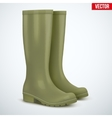 Pair of hunters boots vector image vector image