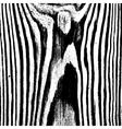 Stripe Wooden Texture vector image