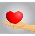 Hand holding a red heart vector image vector image