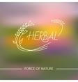 herbal logo vector image vector image