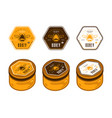 hexagonal template honey labels in color variants vector image vector image