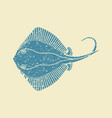 stingray fish icon vector image