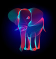 colorful elephant contour silhouette with vector image
