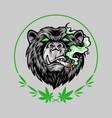 marijuana smoke scary bear weed mascot logo vector image vector image