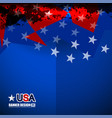 usa color flag design vector image vector image