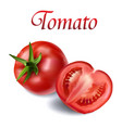 vegetable tomato fresh tomato white background vec vector image