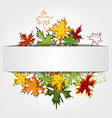 Colorful autumn leaves background llustration vector image