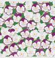 joy of pansies vector image