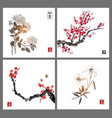 sakura blossom chrysanthemum and lily flowers on vector image