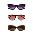 sunglasses with colored glass vector image