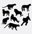 Cheetah panther wild animal silhouette vector image