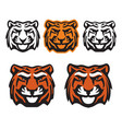 bengal tiger mascot wild cat head icons vector image