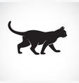 cat walking on a white background pet animals vector image vector image