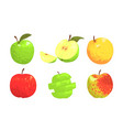 collection colorful apples red green yellow vector image