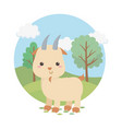 cute goat animal farm character vector image
