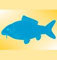 drawing carp fish vector image vector image