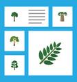 flat icon ecology set of evergreen acacia leaf vector image