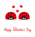 happy valentines day two red lady bug ladybird vector image vector image
